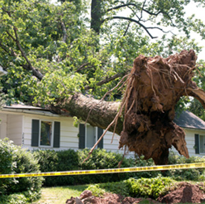 Storm Damage Restoration Northville MI